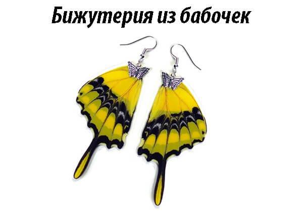 раздел сайта сережки и кулоны из крыльев бабочек