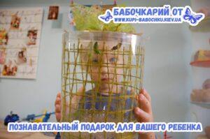 babochkariy-podarok rebenku