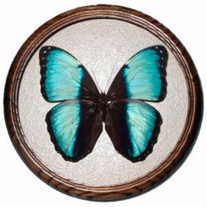 Morpho pseudogamedes сувенирная бабочка в рамке