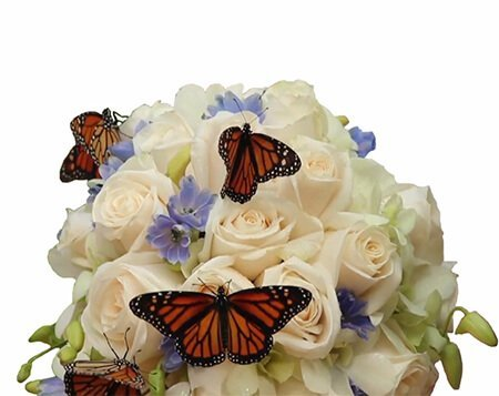 букет цветов с монархами