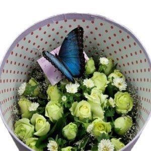 бабочка морфо в коробке с цветами
