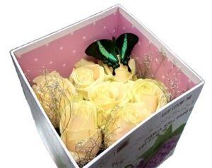 Бабочки в коробке подарок цена волгоград 65