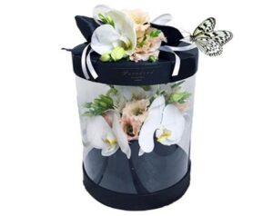 бабочка зебра в коробке с цветами