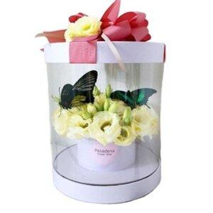 коробка с цветами и бабочками