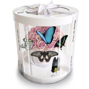 цветы и бабочки в коробке