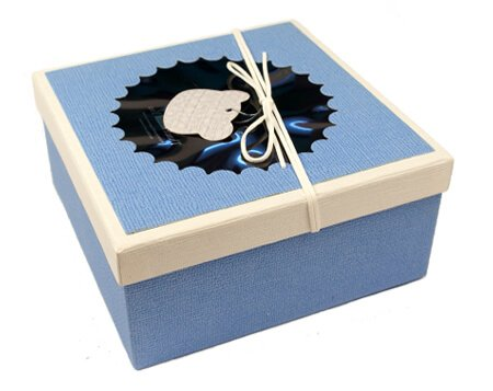 голубая квадратная коробка с окошком для вручения бабочек