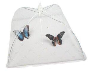 домик для бабочки