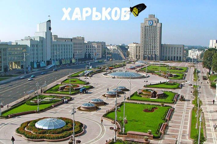 babochki_Kharkov