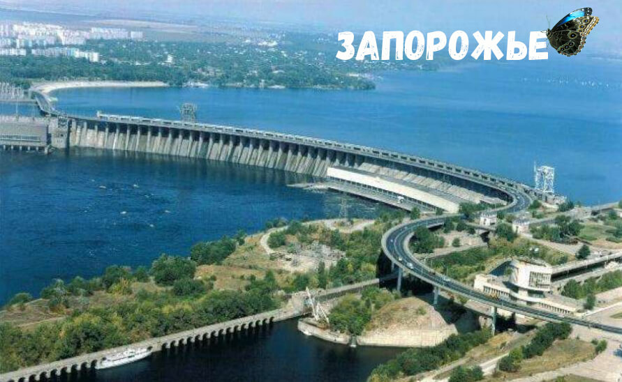 babochki_zaporizhia